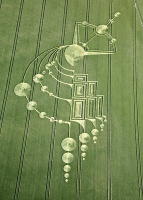 crop-circle-below-milk-hill-3-near-alton-barnes-wiltshire-reported-21st-june-20091