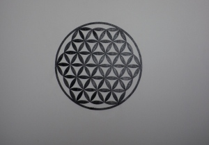 Flower of Life: at root of all growth from cell to consciousness
