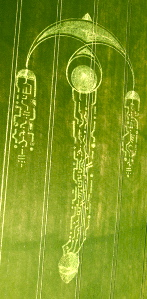 "Harking back to beautiful swallow crop circle of June 2009 with sparkling  ""coded"" tails, courtesy CCC"