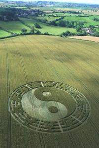 37-Stantonbury-Hill-Somerset-07-07-2007-Wheat-L