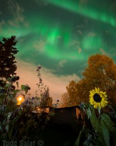 Shifing aurora borealis erupt over Anchorage AK 9/19/15 at height of CME storm