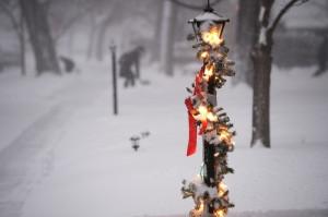Sudden snowstorm in Denver focuses our seasonal senses—photo Andy Cross