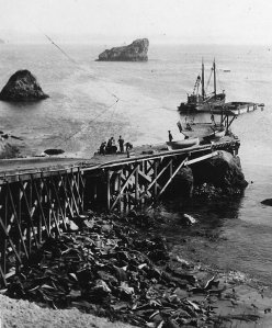 Trinidad Pier in whaler days, now a Northern Humboldt fishing village and resort
